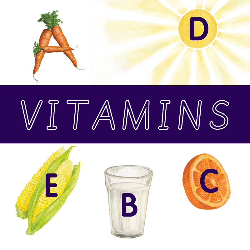 From A to E – why the first five letters of the alphabet are so important when it comes to vitamins